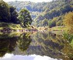River Wye Reflections